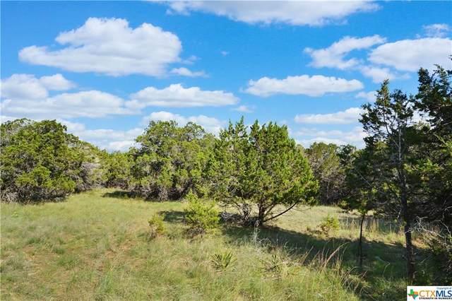 LOTS 29 & 30 Ridge Oak Drive, Wimberley, TX 78676 (MLS #452622) :: Texas Real Estate Advisors