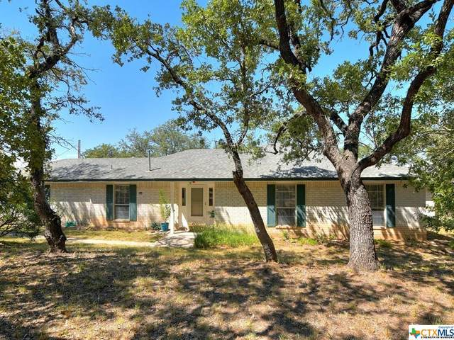 118 Wolf Ridge, OTHER, TX 78605 (MLS #452649) :: The Real Estate Home Team