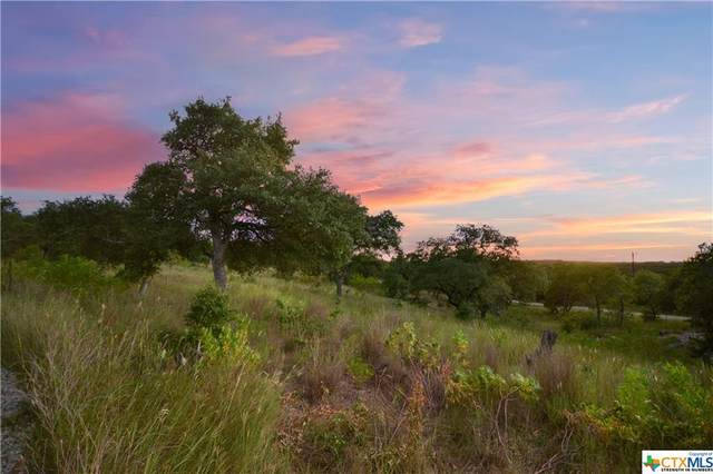 1000 Old Oaks Ranch Road, Wimberley, TX 78676 (MLS #452762) :: The Real Estate Home Team