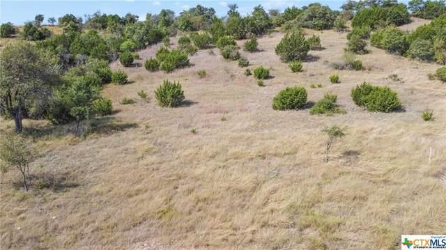 19 Cottonwood Mesa Drive, Kempner, TX 76539 (MLS #452896) :: Texas Real Estate Advisors