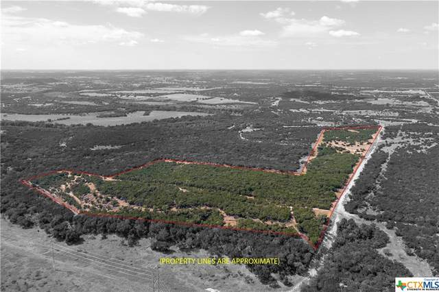 1934 Live Oak Cemetery Road, Youngsport, TX 76542 (#452908) :: First Texas Brokerage Company
