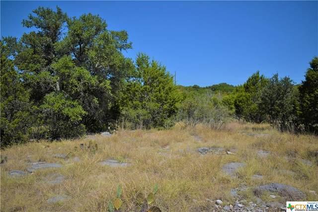 754 Park Road, Lampasas, TX 76550 (#452972) :: Empyral Group Realtors