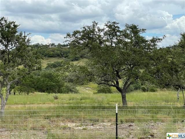 2985 Maenius Rd, Blanco, TX 78606 (MLS #453164) :: The Real Estate Home Team