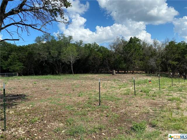 6585 Hood Trail, Belton, TX 76513 (MLS #453165) :: Texas Real Estate Advisors