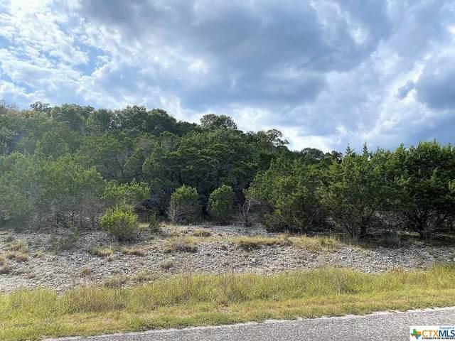 7285 Amber Rene Drive, Belton, TX 76513 (MLS #453197) :: Vista Real Estate
