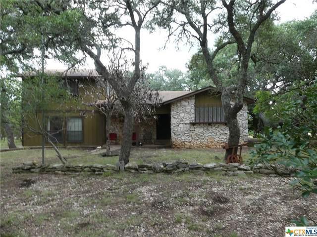 101 Canyon Loop, Boerne, TX 78006 (MLS #453201) :: Kopecky Group at RE/MAX Land & Homes