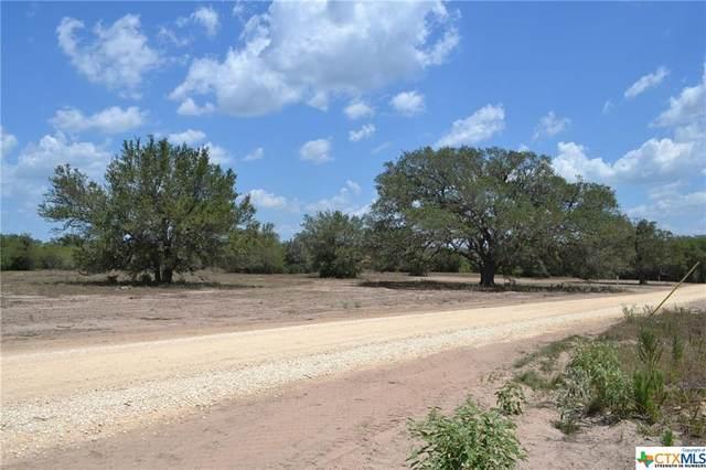 000 Fm 2506, Goliad, TX 77963 (MLS #453223) :: Kopecky Group at RE/MAX Land & Homes