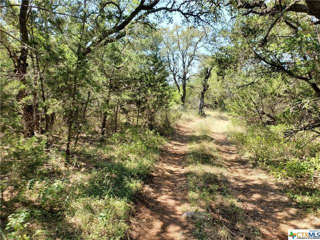 LOT 9 Hilliard Rd., San Marcos, TX 78666 (MLS #453408) :: Texas Real Estate Advisors