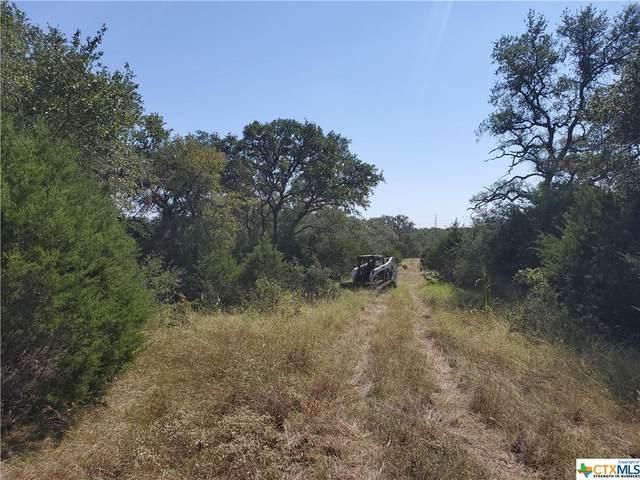 Lot 10 & 11 Hilliard Road, San Marcos, TX 78666 (MLS #453436) :: Texas Real Estate Advisors