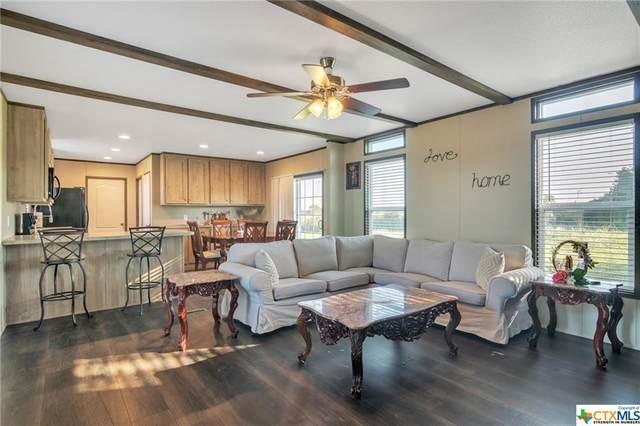 3485 N Hwy 77, Schulenburg, TX 78956 (#453443) :: First Texas Brokerage Company