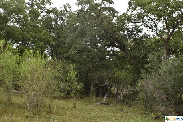 986 E Fm 884, Weesatche, TX 77963 (MLS #453592) :: Kopecky Group at RE/MAX Land & Homes