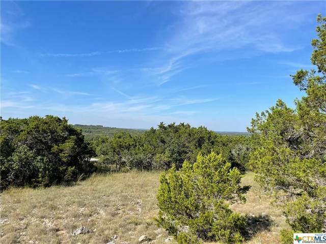 2300 Fm 3424, Canyon Lake, TX 78133 (MLS #453726) :: The Real Estate Home Team