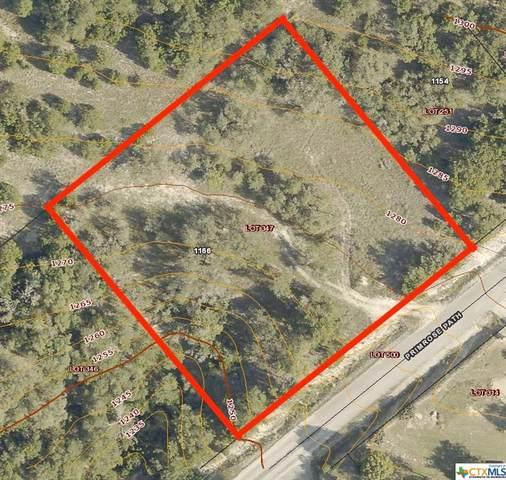 1166 Primrose Path, Canyon Lake, TX 78133 (MLS #453919) :: Rutherford Realty Group