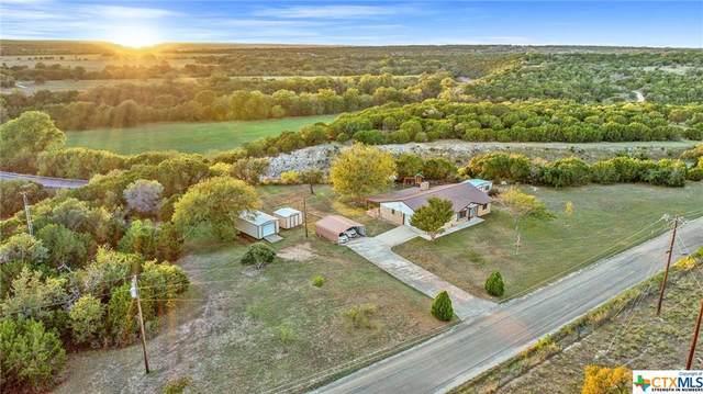 109 County Road 221, Kempner, TX 76539 (#453981) :: Sunburst Realty
