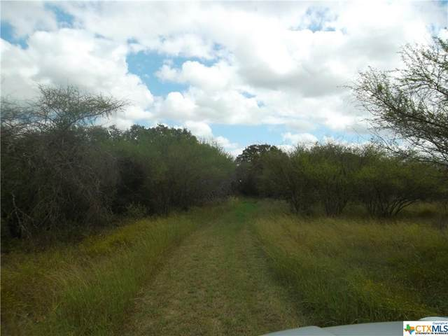 4063 Five Mile Road, Cuero, TX 77954 (MLS #454100) :: The Zaplac Group