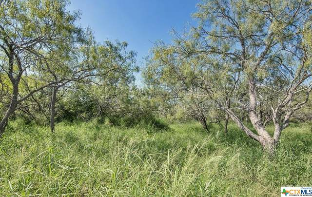 Skidmore, TX 78389 :: Texas Real Estate Advisors