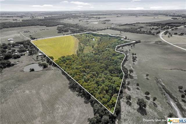 000 Mockingbird Hill Ln., Temple, TX 76501 (MLS #454284) :: Kopecky Group at RE/MAX Land & Homes