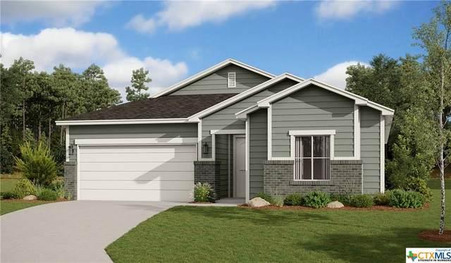3801 Donald Drive, Seguin, TX 78155 (MLS #454301) :: Kopecky Group at RE/MAX Land & Homes