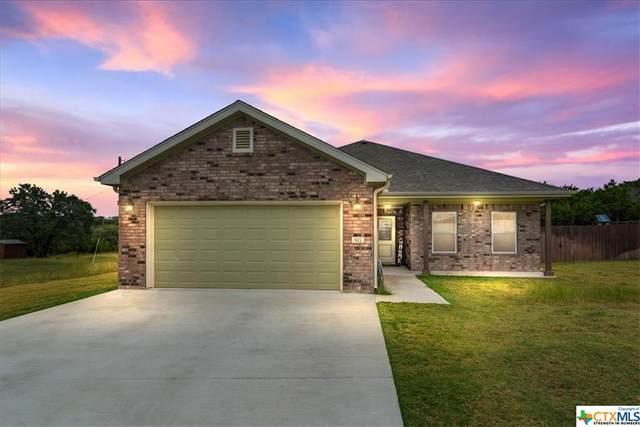 517 Dawns Peak, Lampasas, TX 76550 (MLS #454438) :: Rutherford Realty Group