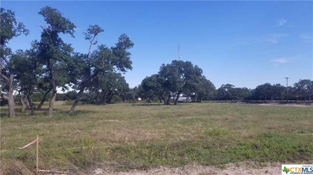 000 Enchanted Oaks Drive, Inez, TX 77968 (MLS #454453) :: Kopecky Group at RE/MAX Land & Homes