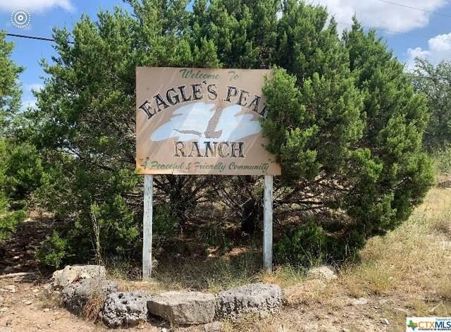 560 Eagle Peak Drive, Fischer, TX 78623 (MLS #454500) :: The Curtis Team