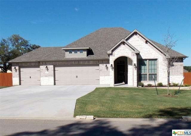 252 Belleview Drive, Belton, TX 76513 (MLS #454549) :: Brautigan Realty