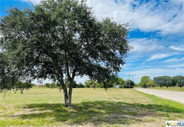 00 Mexico St, Edna, TX 77957 (MLS #454576) :: The Zaplac Group