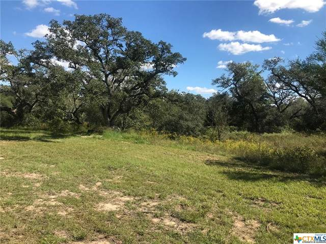 93 Isabel Ivy Road, Victoria, TX 77905 (MLS #454603) :: RE/MAX Family