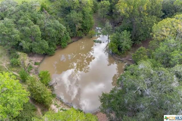 20091 Fm 530, Hallettsville, TX 77964 (#454609) :: First Texas Brokerage Company