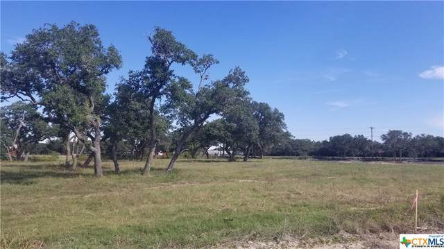 000 Enchanted Oaks Drive, Inez, TX 77968 (MLS #454614) :: RE/MAX Land & Homes