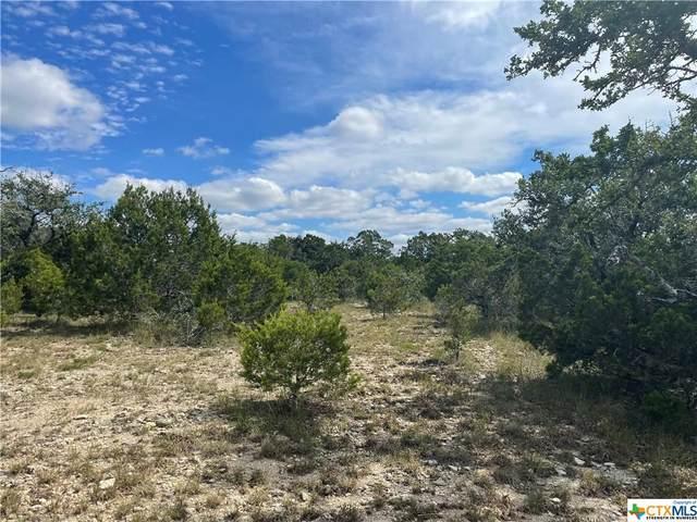 927 Primrose Path, Canyon Lake, TX 78133 (MLS #454621) :: The Real Estate Home Team