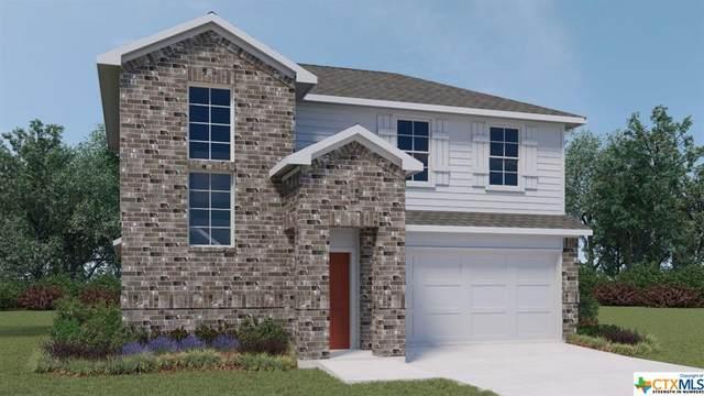 117 Half Moon Court, San Marcos, TX 78666 (MLS #454726) :: Texas Real Estate Advisors