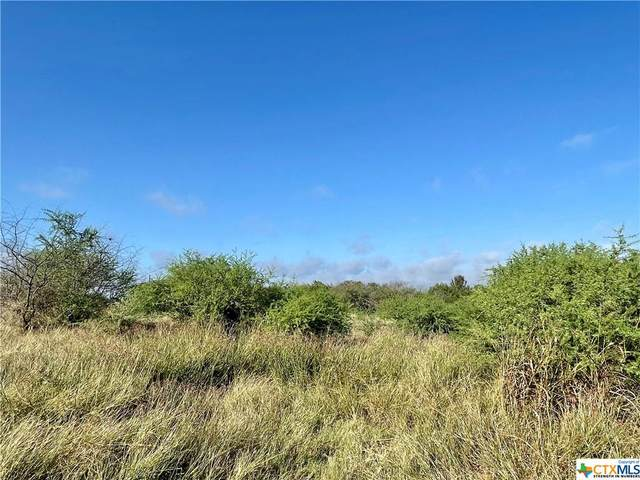 Lot 14 Cannon North Drive, Gonzales, TX 78629 (MLS #454827) :: Rutherford Realty Group