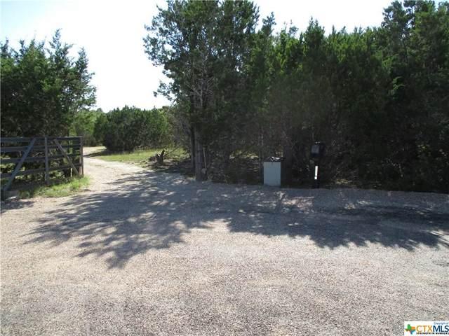 2999 Mimosa Drive, Kempner, TX 76539 (#454869) :: Empyral Group Realtors