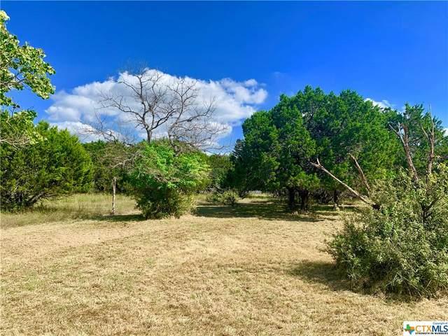 2551 Lakeshore Drive, Canyon Lake, TX 78133 (MLS #454953) :: Texas Real Estate Advisors