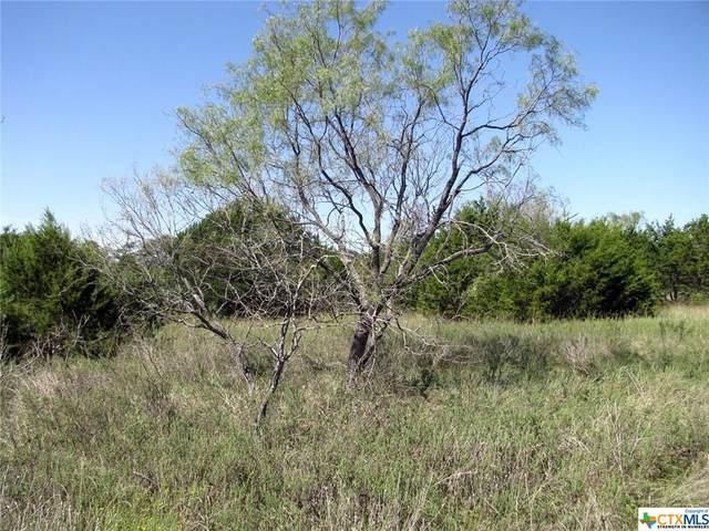 TBD Private Road 4212, Evant, TX 76525 (MLS #455039) :: Texas Real Estate Advisors