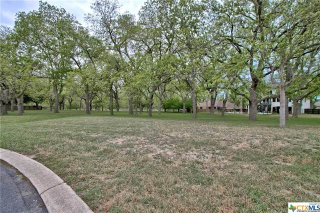 127 Milagros, Seguin, TX 78155 (MLS #455053) :: Texas Real Estate Advisors