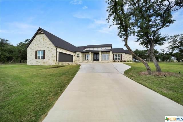 8 Lakeview Estates Drive, Belton, TX 76513 (MLS #455079) :: The Barrientos Group