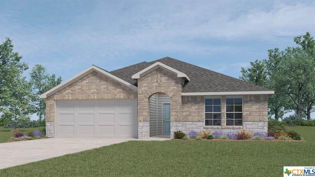 801 Cinnamon Teal, Seguin, TX 78155 (MLS #455215) :: Vista Real Estate