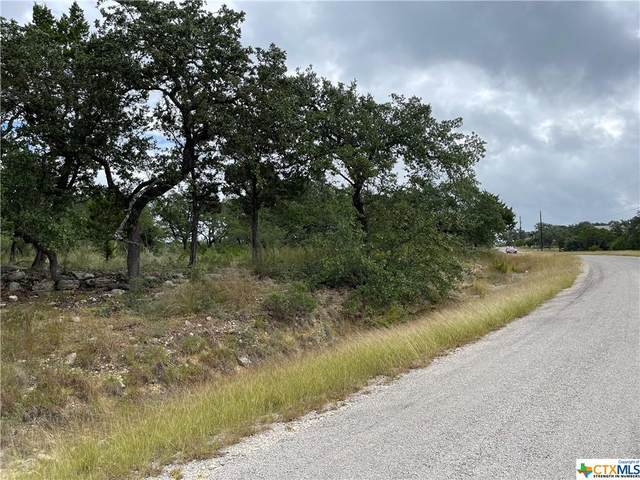 207 Flanders, Fischer, TX 78623 (MLS #455341) :: Vista Real Estate