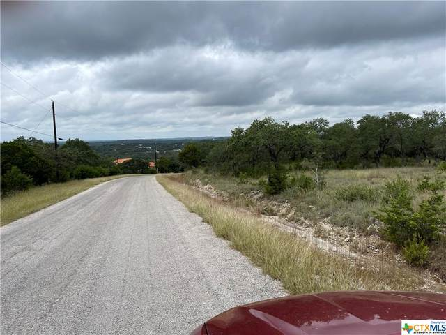 215 Flanders, Fischer, TX 78623 (MLS #455342) :: Vista Real Estate