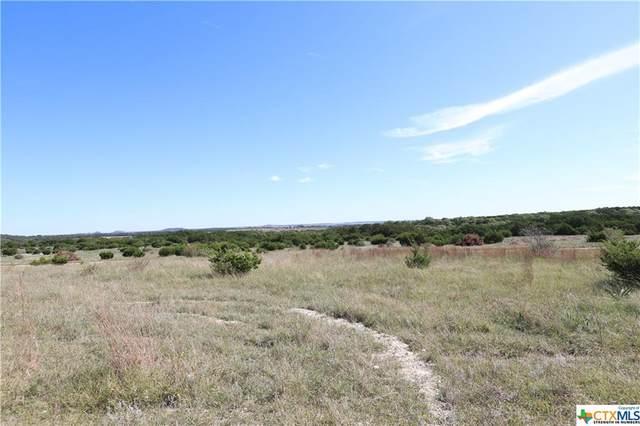 TR 8 Pr 1240, Lampasas, TX 76550 (MLS #455406) :: Vista Real Estate