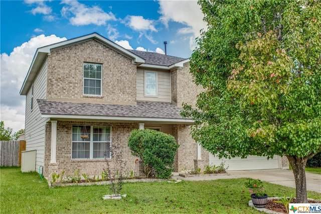 421 Primrose Boulevard, Kyle, TX 78640 (MLS #455453) :: Vista Real Estate