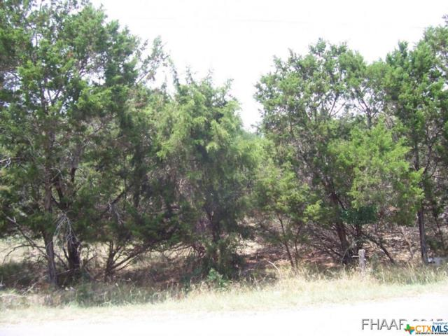 6&8 Tanyard Road, Belton, TX 76513 (MLS #8202130) :: Erin Caraway Group