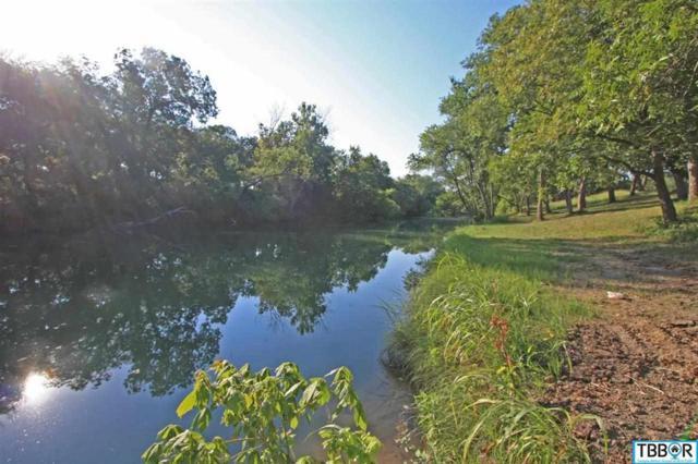1015 River's Edge Drive, Belton, TX 76513 (MLS #9106413) :: Erin Caraway Group
