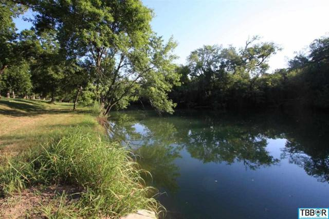 2055 River's Edge Drive, Belton, TX 76513 (MLS #9106414) :: Erin Caraway Group