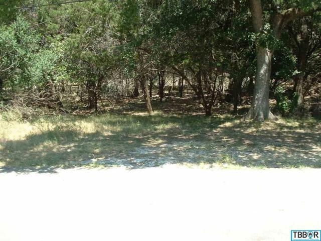 0000 Blackjack, Morgan's Point, TX 76513 (MLS #9110409) :: Magnolia Realty