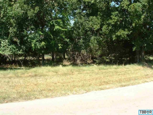 58 Buckskin, Morgan's Point, TX 76513 (MLS #9110412) :: Vista Real Estate