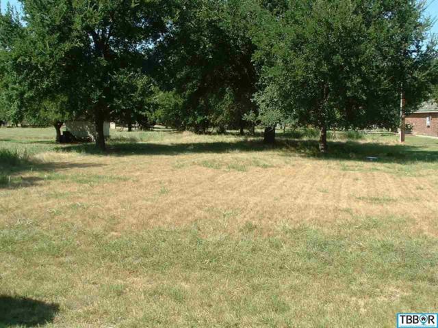 44 Buckskin, Morgan's Point, TX 76513 (MLS #9110414) :: Magnolia Realty