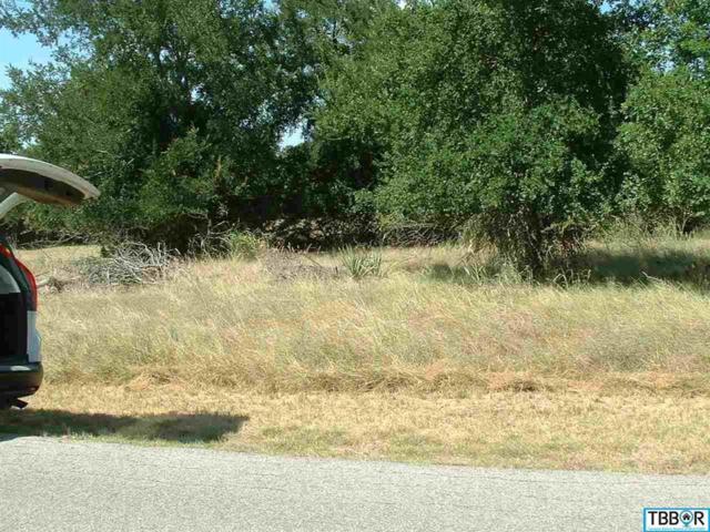 50 Buckskin, Morgan's Point, TX 76513 (MLS #9110415) :: Magnolia Realty
